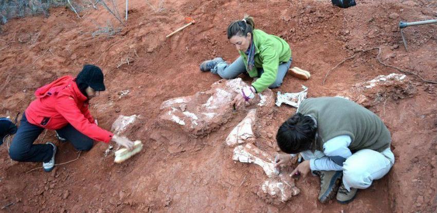 Pronađeni fosili nove vrste dinosaursa