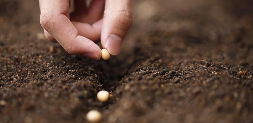 Bijeljina: Ukupno tri i po miliona KM za sufinansiranje u poljoprivredi