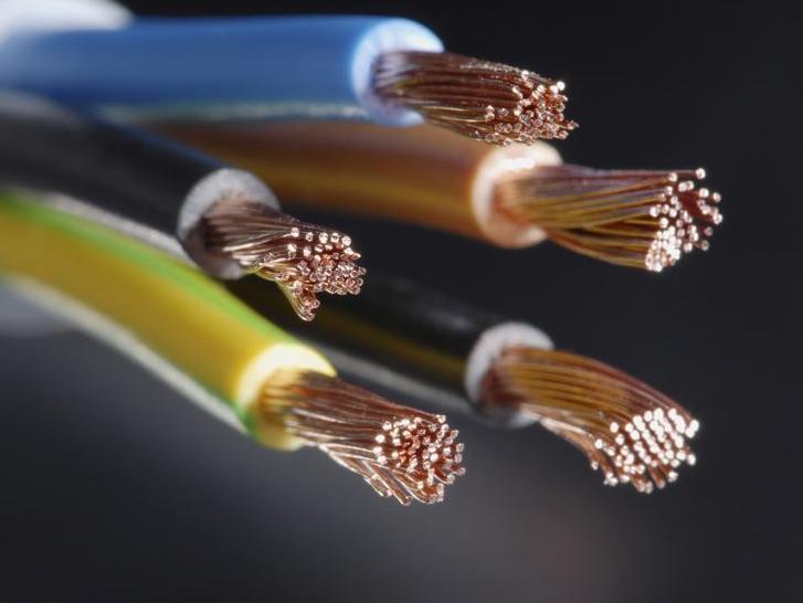 Marel electric: Malim, ali sigurnim koracima zauzimaju mjesto na tržištu