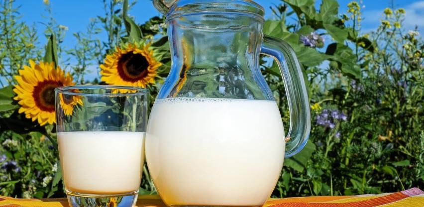 Edukacijom poljoprivrednika do rekordnih količina mlijeka