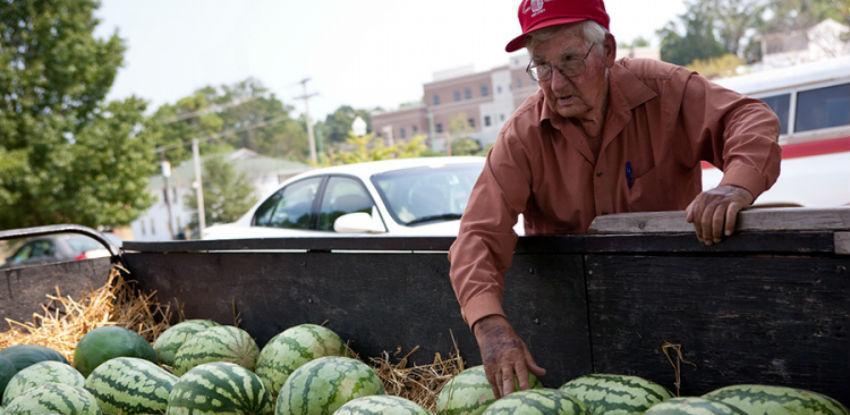 Domaći proizvođači niskim cijenama potiskuju strane lubenice
