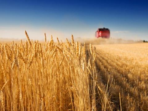 UN: 80 milijardi dolara izgubljeno u poljoprivredi zbog prirodnih nepogoda