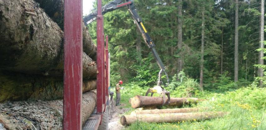 Razvijen sistem za praćenje legalnosti sječe i prodaje drvnih sortimenata