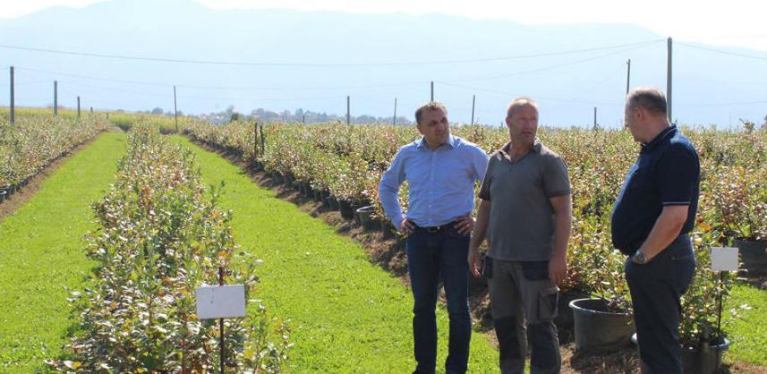 Cazinskim poljoprivrednicima godišnje četiri miliona KM poticaja