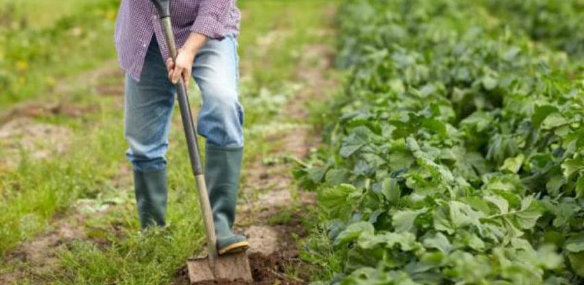 U prijedorskoj regiji u toku formiranje poljoprivrednog klastera
