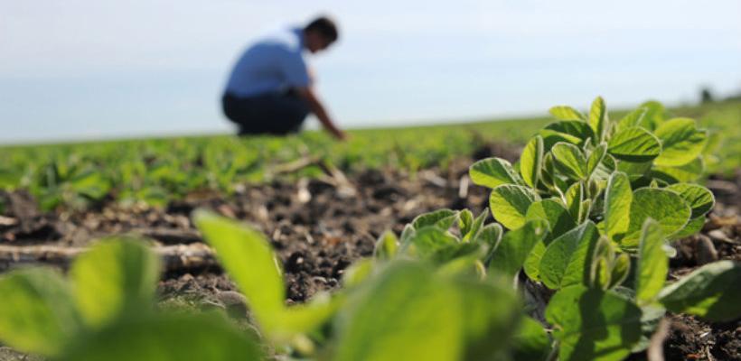 BiH i Kina jačaju saradnju u oblasti poljoprivede i ruralnog razvoja
