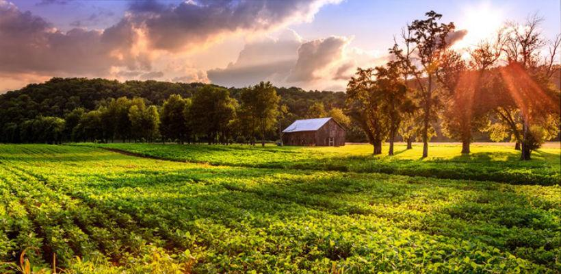Usvajanjem strategije ruralnog razvoja BiH dobija znatna sredstva