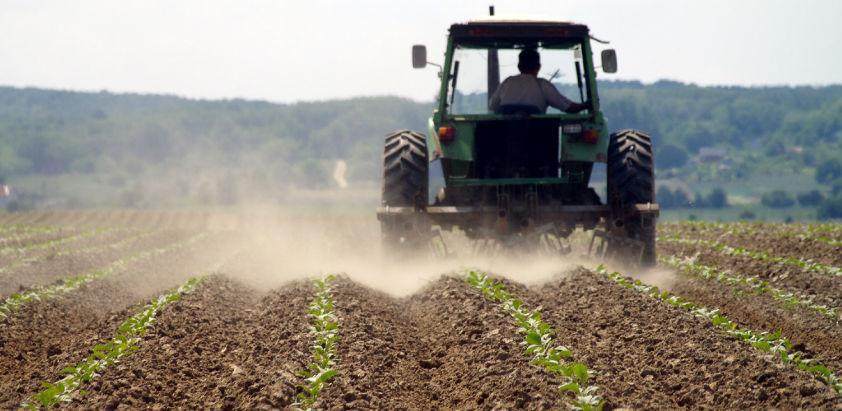 Poljoprivreda može da bude osnov razvoja