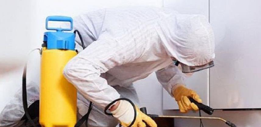 Važno je znati - dezinfekcija, dezinsekcija i deratizacija kao preventivne mjere