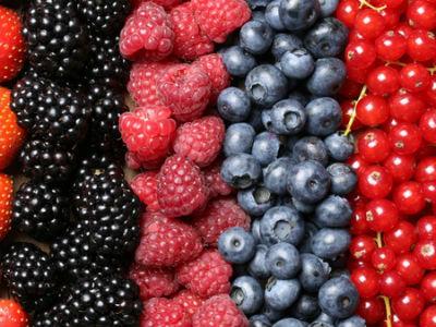 Novi termini infomativnih sastanaka za grantove za jagodičasto voće