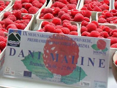 Dani maline u Bratuncu: Malinari RS konkurentni i na evropskom tržištu