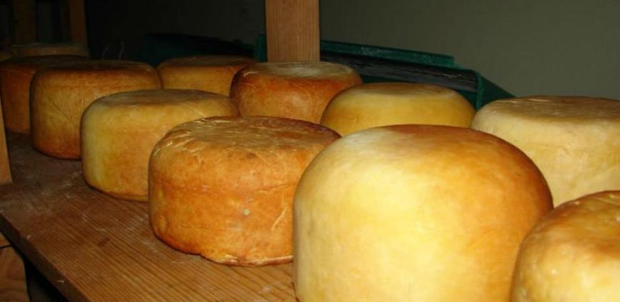 Novi Grad: U završnoj fazi adaptacija objekata za mini sirare