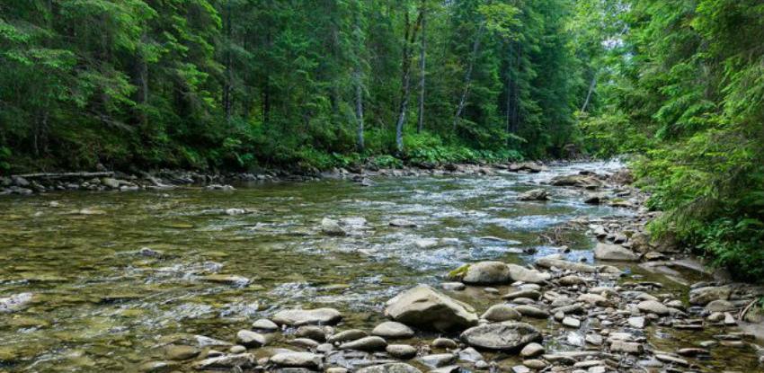 Park prirode Cicelj proglašen zaštićenim šumskim područjem