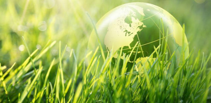 GIZ obilježava Svjetski dan okoliša