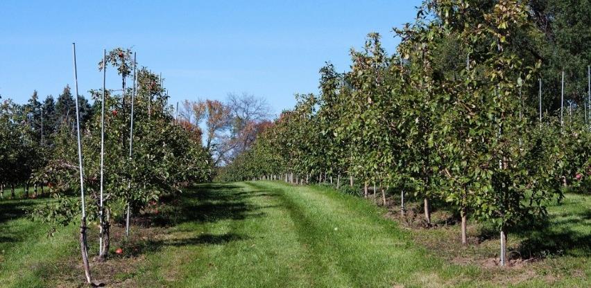 Grad Visoko objavio pozive za poticaj poljoprivrednoj proizvodnji u 2020.