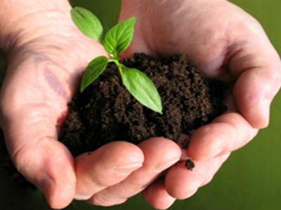 "U Livnu predavanje ""Analizom tla do rentabilne proizvodnje"""