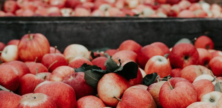Firma iz Šamca dobila zeleno svjetlo za izvoz sadnica voća: Rusko tržište odskočna daska