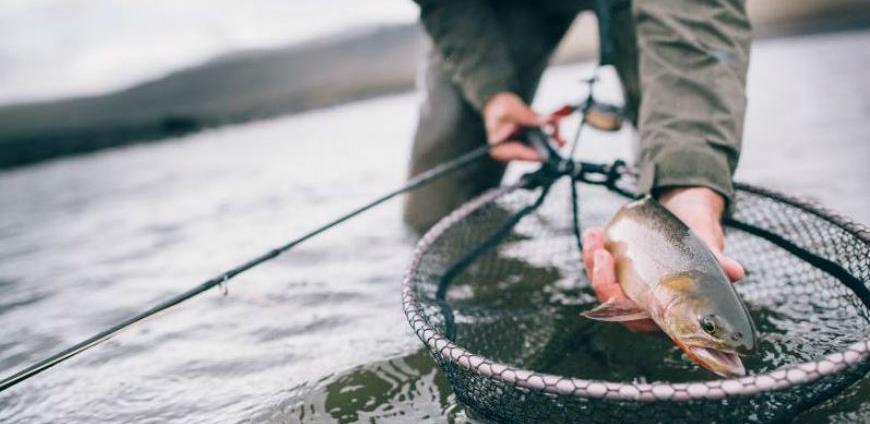 Hrvatski ribari traže siguran i nesmetan rad