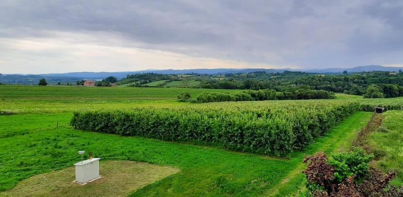 Dubički poljoprivrednici imaju siguran plasman sezonskog voća i povrća u Bingu