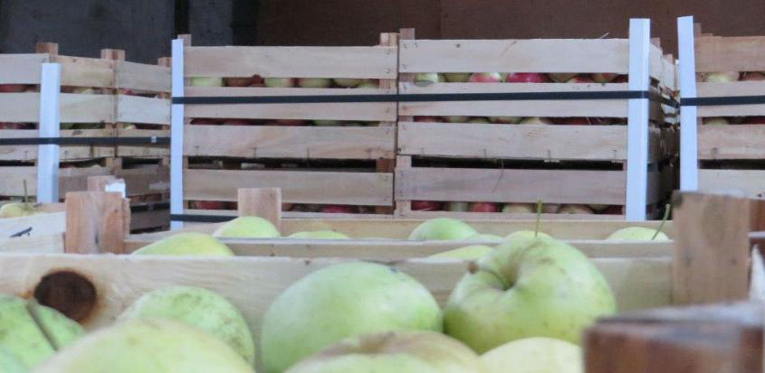 'Fruct Company' iz Bijeljine izbrisan sa liste izvoznika za Rusiju