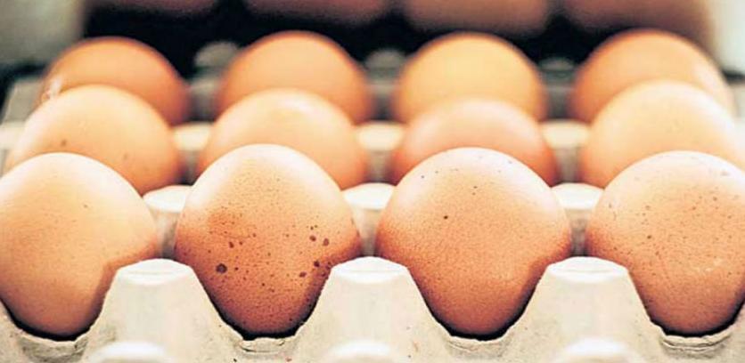 Panika u sedam zemalja zbog skandala sa jajima