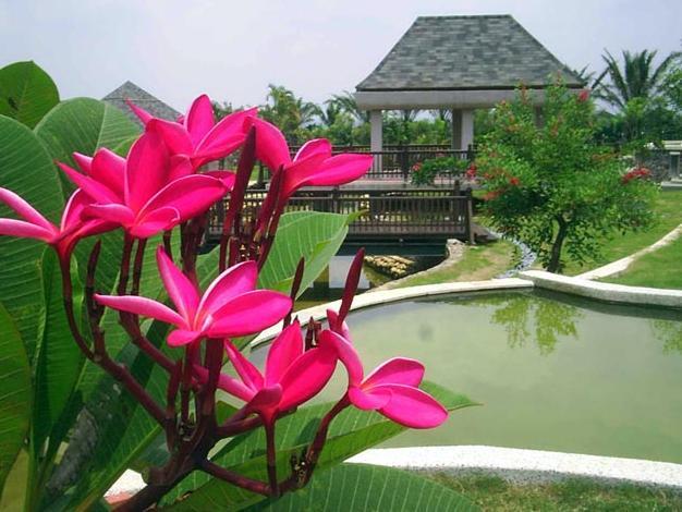 Viator vas vodi na Bali: Savršeno mjesto da pronađete svoj mir