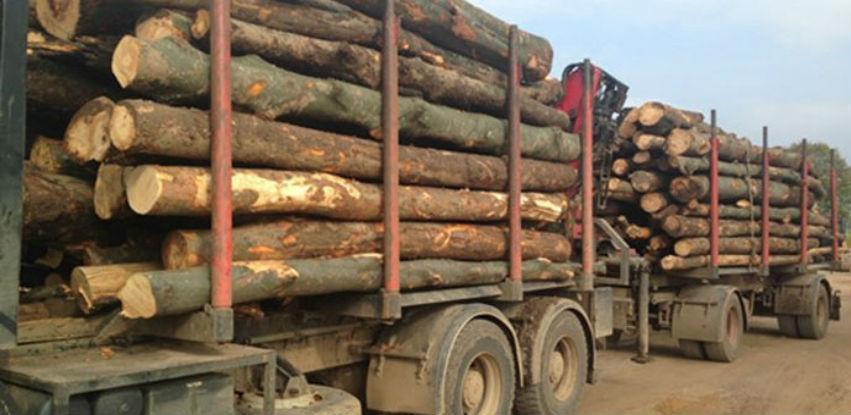 Eskalirao problem sa nabavkom drvne sirovine