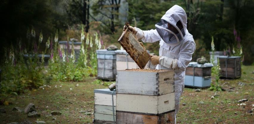 BiH pravi prve korake ka cyber pčelarstvu