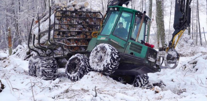 Ilegalna sječa u BiH ukrade dva miliona kubika šume godišnje