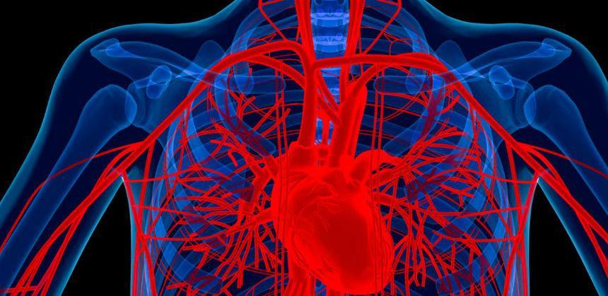 Nakon prestanka pušenja srcu treba 15 godina da se oporavi