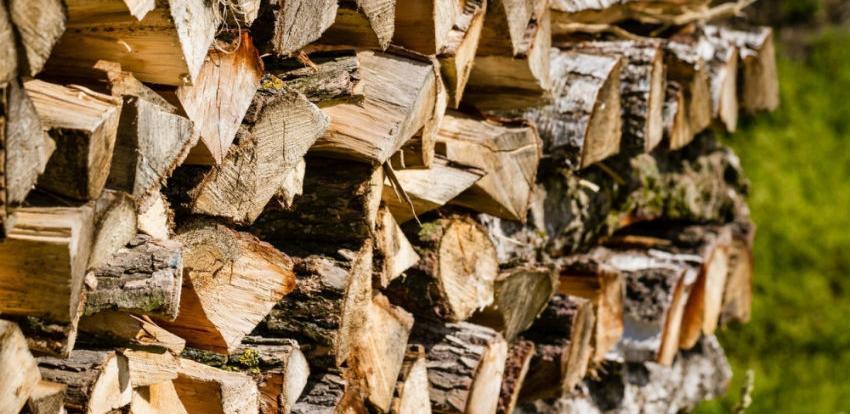 Rast cijena i nestašica drva za ogrjev u BiH