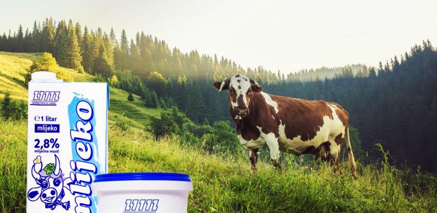 BiH ima sve predispozicije za proizvodnju i izvoz zdravog mlijeka