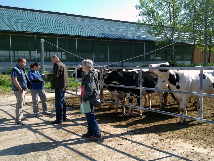 Milkos: Nove štete na farmi 'Spreča'