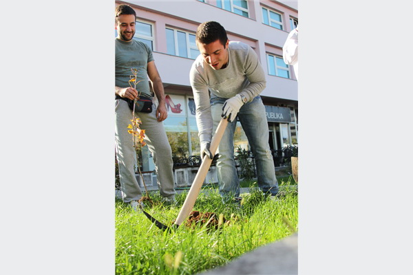U BiH započela volonterska akcija Let's do it – milion sadnica za 1 dan