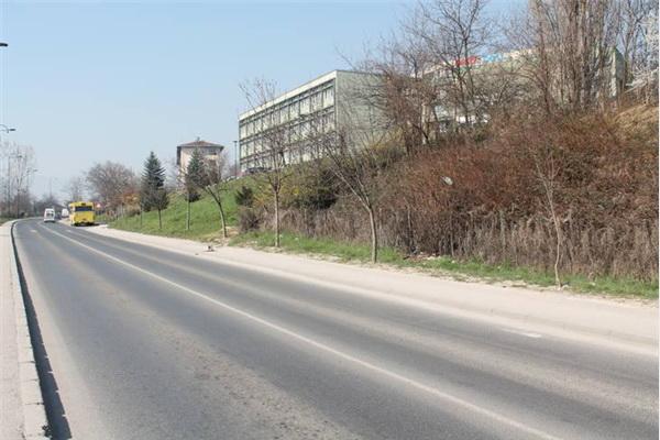 U ulici Safeta Zajke od danas raste 30 novih javora