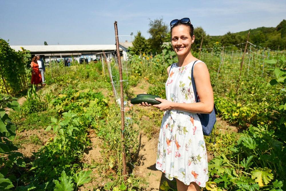 Banjalučani na nekada zapuštenom zemljištu proizvode organsko povrće