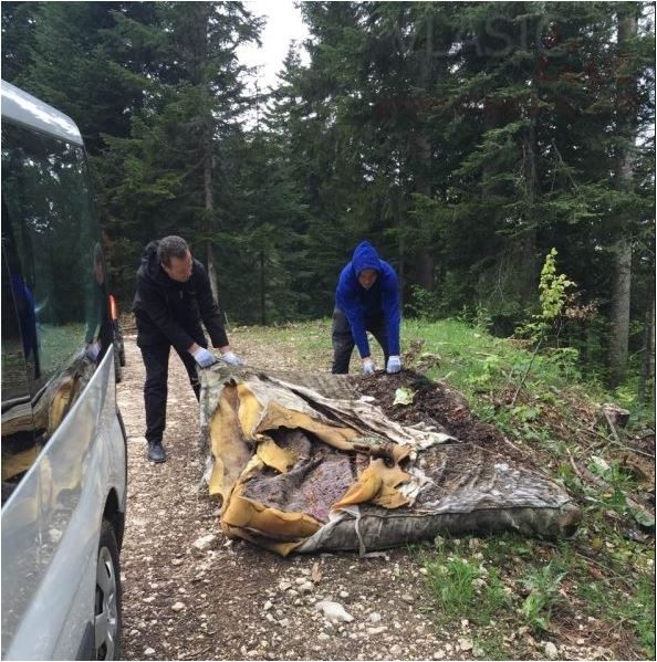 Za primjer svima: Uposlenici hotela BLANCA u akciji čišćenja planine Vlašić
