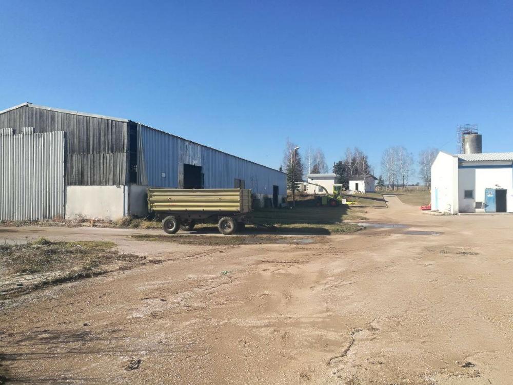 Banjalučka firma digla Farmu Romanije na noge: Prve količine mlijeka najesen