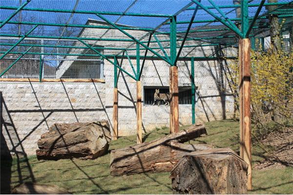 Svečanost u 'Pionirskoj dolini', nove nastambe i životinjske vrste