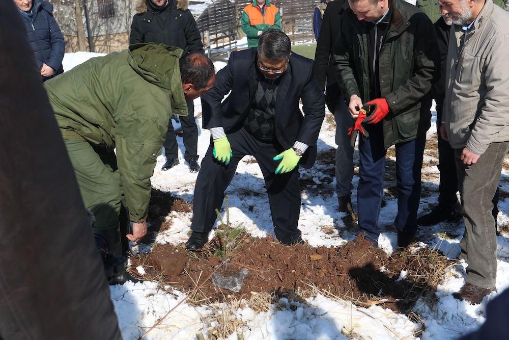 Ozvaničen početak realizacije projekta Sarajevo Afforestation