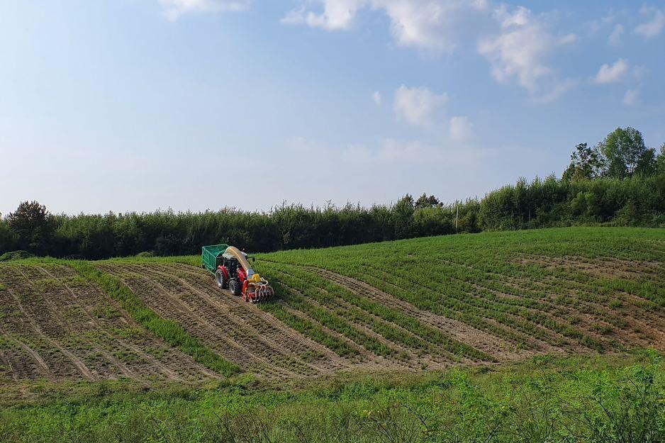 IoT rješenja za pametnu poljoprivredu postaju sadašnjost naše zemlje