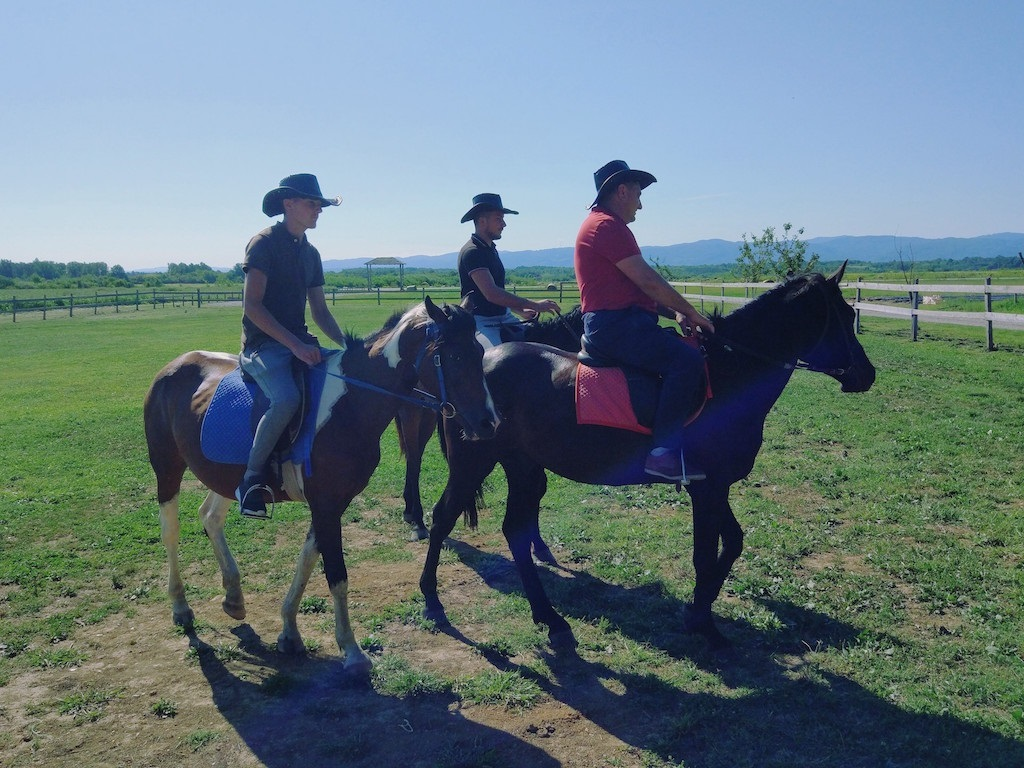 Konji za jahanje na Ranču Mionica