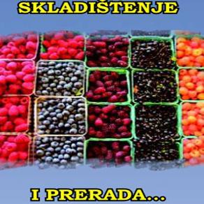 Heko: Skladištenje i prerada jagodastog voća, šumskih plodova i gljiva