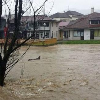 Katastrofalne posljedice poplava: Štete nadmašile općinske budžete