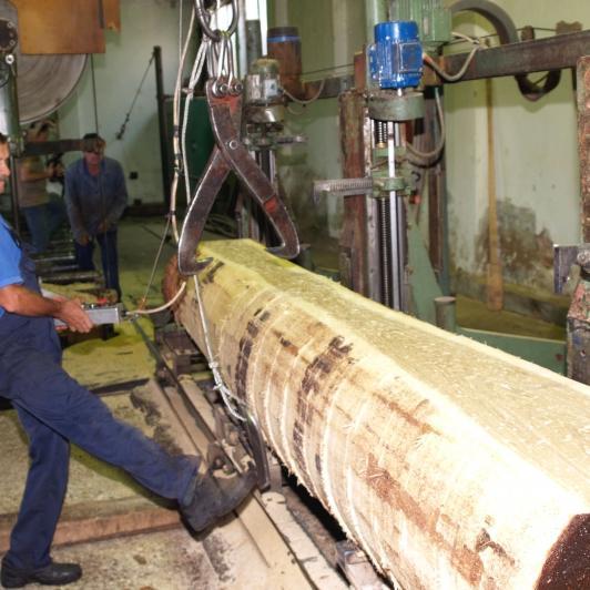 Drvoprerađivački sektor RS: Izvoz skoro četiri puta veći od uvoza
