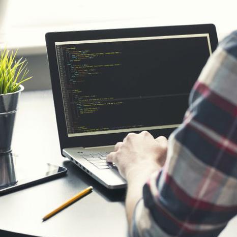 Softver industrija je prava oaza dobro plaćenih poslova u pustinji kakvom se često čini Bosna i Hercegovina.