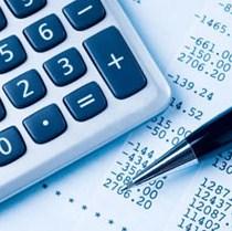 Vralaudit d.o.o. Banja Luka – referenc lista za usluge revizije finansijskih izvještaja u 2008. godini