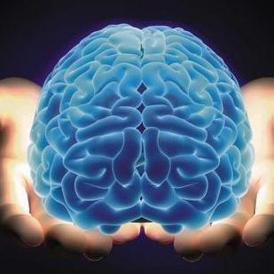 Naučnici napreduju prema umjetnoj inteligenciji