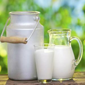 Četiri slovenačke mljekare dobile dozvolu za izvoz u Kinu