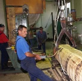 Gradonačelnik Bihaća Emdžad Galijašević kazao je da na području grada ima 20 pilana sa oko 300 radnika i da je još njih najavilo zatvaranje.